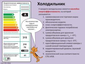 skolko-elektroenergii-v-chas-potreblyaet-xolodilnik (1)